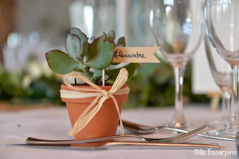 Une succulente en cadeau pour chaque invité, avec des petits drapeaux pour le placement.